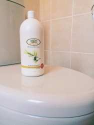 {Product Review} Better Earth Eco-Friendly Cleaning Productsbathroom and loo cleaner