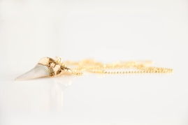 Gold plated Shark's tooth fossil(4110)